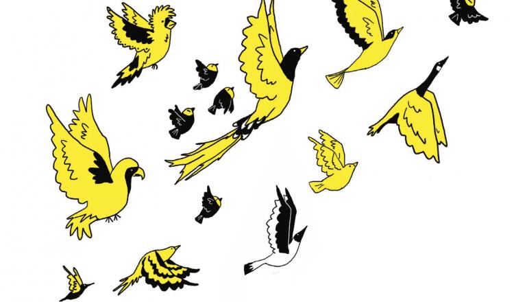 ilustración Kara Pyle