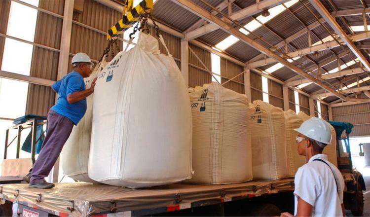 Trabajadores cargan cañas de azúcar en una destilería de etanol en Brasil. Foto: FAO/Giuseppe Bizzarri